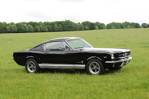 [Image: 393-Ford-1965-Mustang-Fastback-2.jpg]